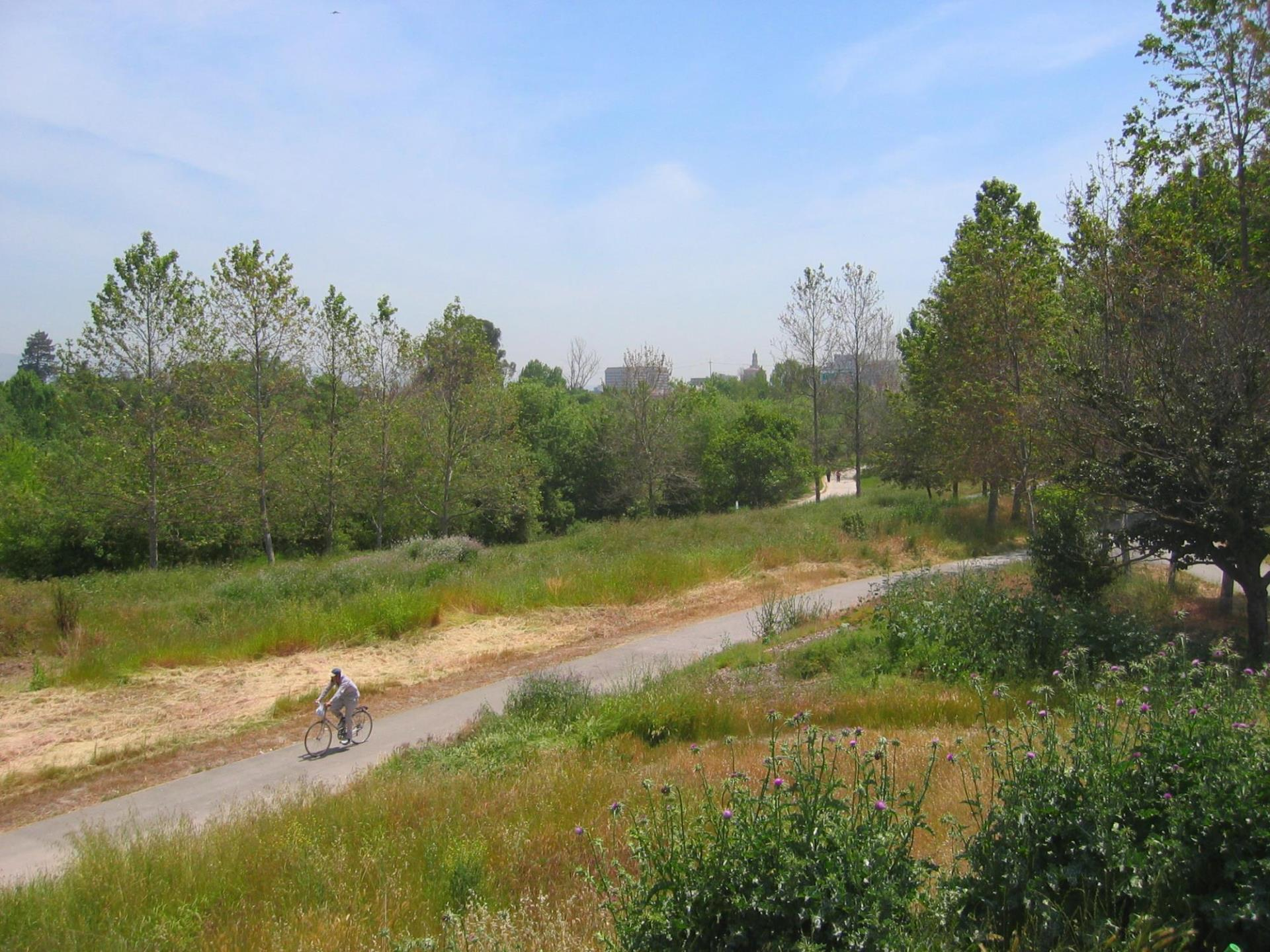 A picture of the Guadalupe River Trail.