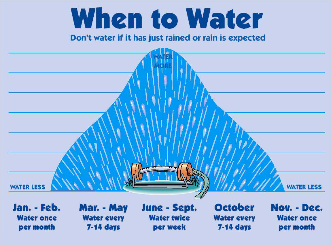When to Water Chart