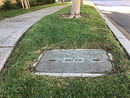 Example of a water meter location.